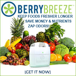 BerryBreeze keeps food fresher longer